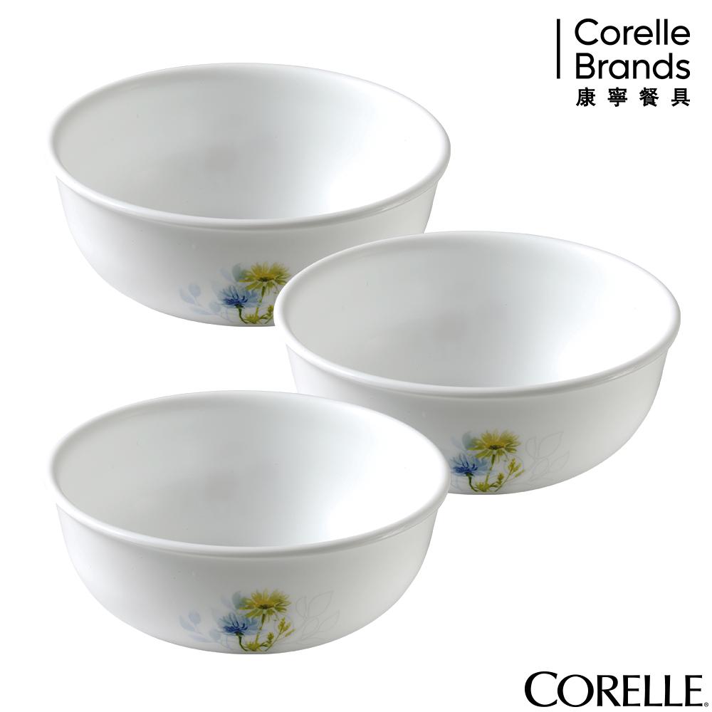 CORELLE康寧 花漾彩繪3件式韓式湯碗組-C03
