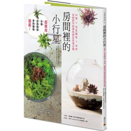 水草x空氣鳳梨x多肉 自組超療癒微型玻璃花園