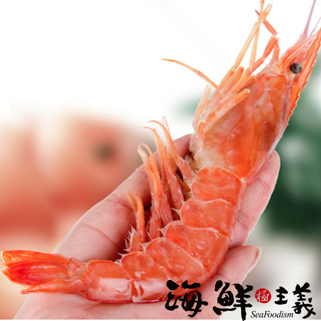 【海鮮主義】天使紅蝦(5包組)