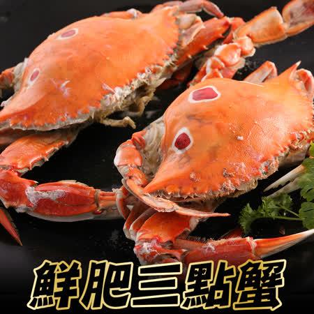 買6隻送6隻 海鮮王鮮肥三點蟹