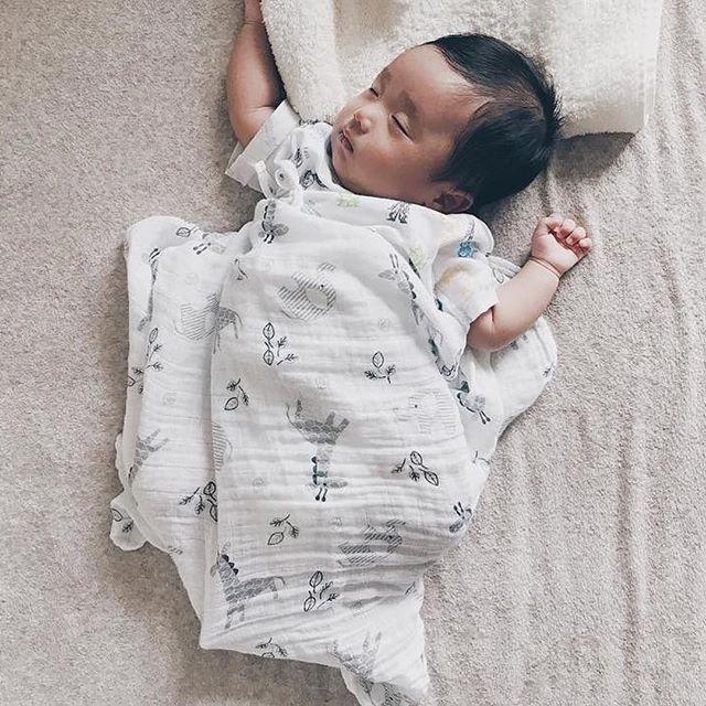 加拿大lulujo嬰兒包巾-非洲動物