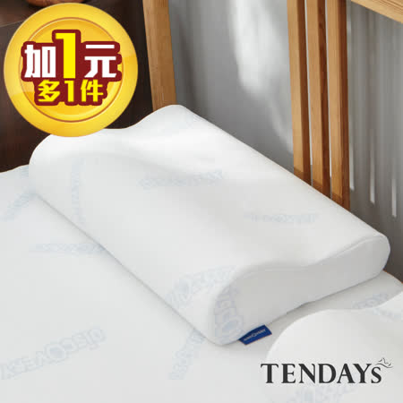TENDAYS 柔眠記憶枕-任選