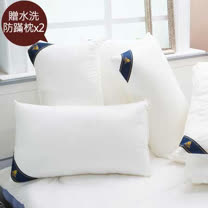 Annabelle-送水洗棉枕x2<BR> 頂級透氣羊毛枕2入