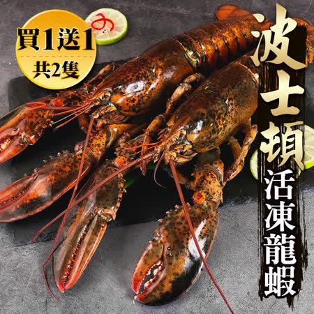海鮮王 加拿大波士頓龍蝦