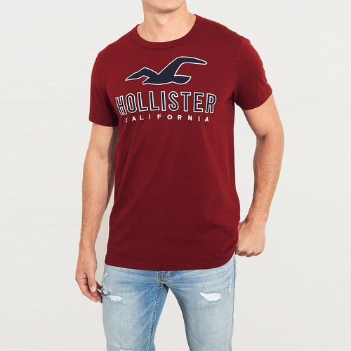 Hollister 海鷗 經典刺繡文字設計短袖T恤-酒紅色 323-248-0135-520