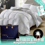 【FOCA】抗菌升級-匈牙利100%天然水鳥羽毛絨暖冬被-(台灣製造) 加碼送3M天絲對枕套X2