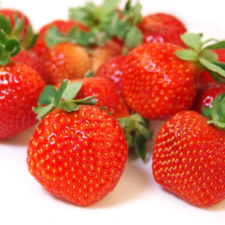 愛上水果 日本空運草莓禮盒2組