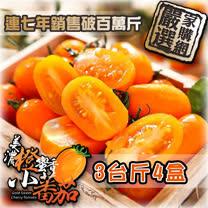 美濃橙蜜香<br>小蕃茄1.8KgX4盒