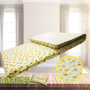 【KOTAS】冬夏透氣床墊 單人 3尺 送記憶枕1顆 記憶枕 單人床墊 -菊花格