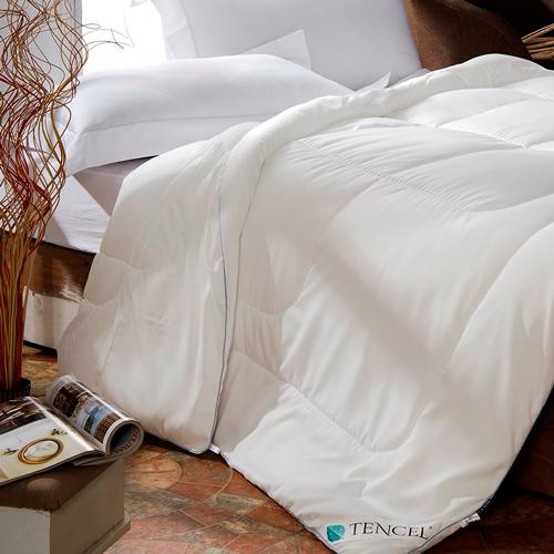 【La Belle-買1送1】加碼送水洗2枕-天絲輕柔舒眠暖冬被(雙人)(兩被兩枕)