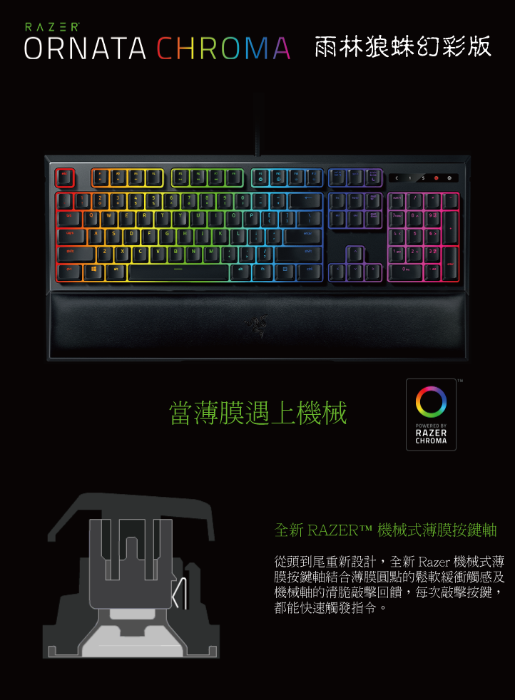 Razer Ornata Chroma 鍵盤(中) 雨林狼蛛幻彩