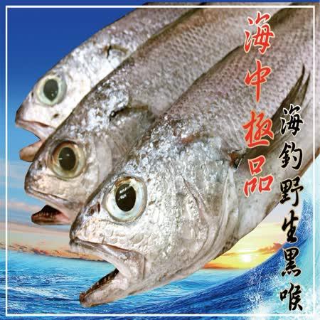 【海撰嚴選】 海釣野生黑喉200g