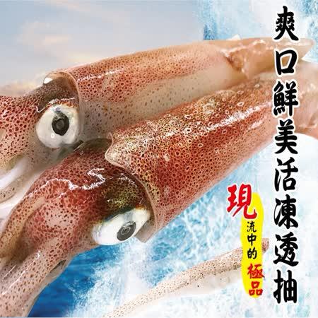 【海撰嚴選】 活凍透抽400g