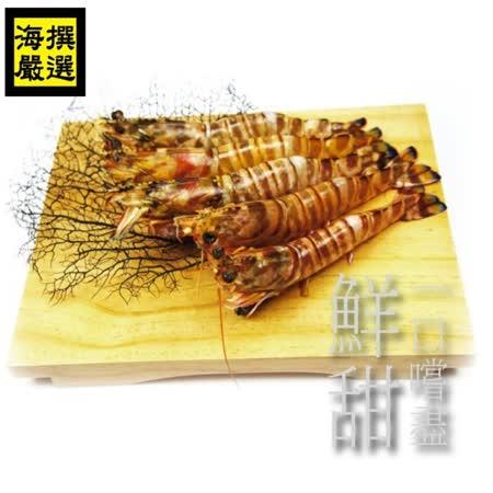 【海撰嚴選】 澎湖野生大明蝦450g