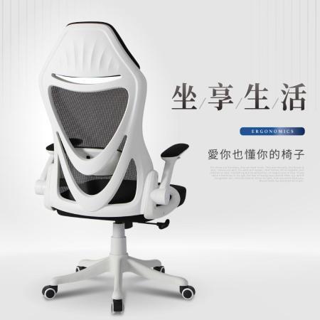 時尚美背 人體工學電腦椅