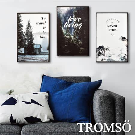 TROMSO 北歐生活版畫有框畫