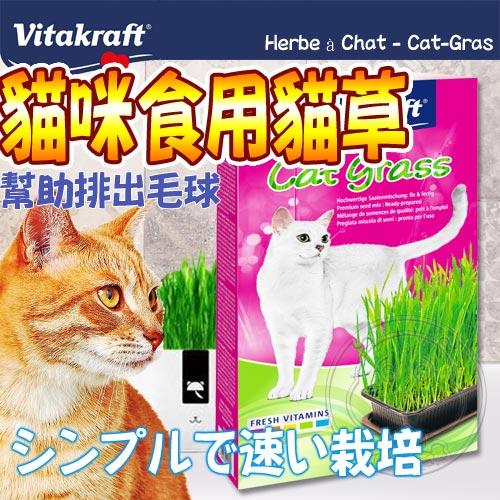 德國vita VitaKraft》天然貓草栽種套組-120g