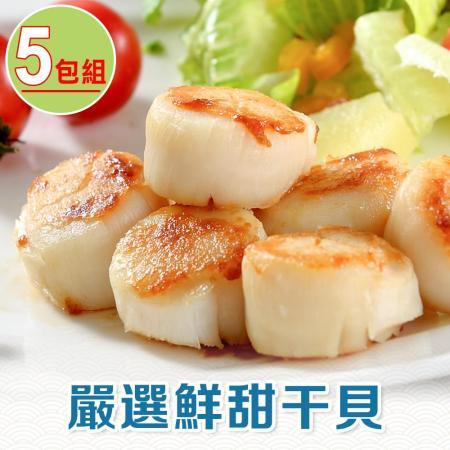 北海道嚴選 鮮甜干貝6顆X5包