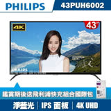 【PHILIPS飛利浦】43吋4K UHD連網液晶顯示器+視訊盒43PUH6002★送飛利浦PD快充組合包★