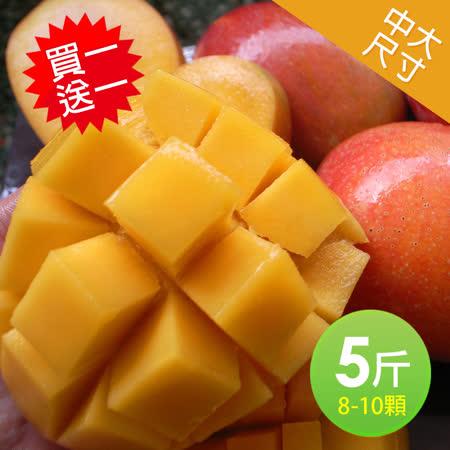 大規格 愛文芒果5斤裝(8-10顆)