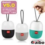 aibo BT-L07 多功能隨身攜帶式 藍牙V5.0無線喇叭(TF卡/隨身碟/FM)