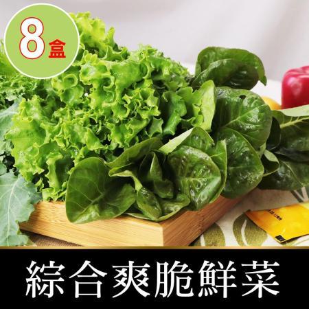 愛上新鮮 新鮮爽脆鮮菜8盒