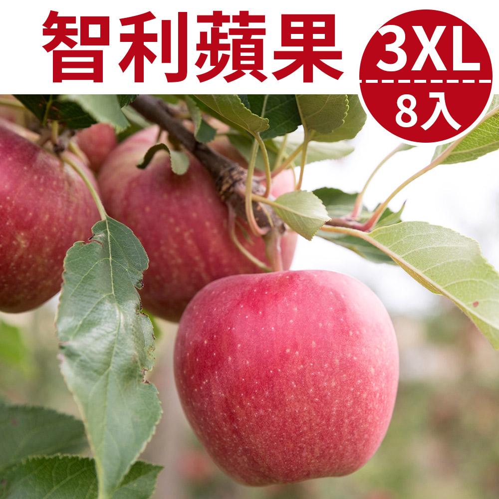 [甜露露]智利富士蘋果3XL 8入禮盒