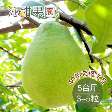 《沁甜果園SSN》 40年老欉文旦5台斤