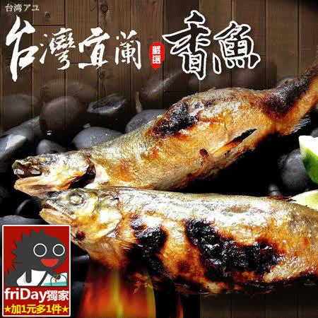 宜蘭天然養殖 鮮嫩公香魚12尾