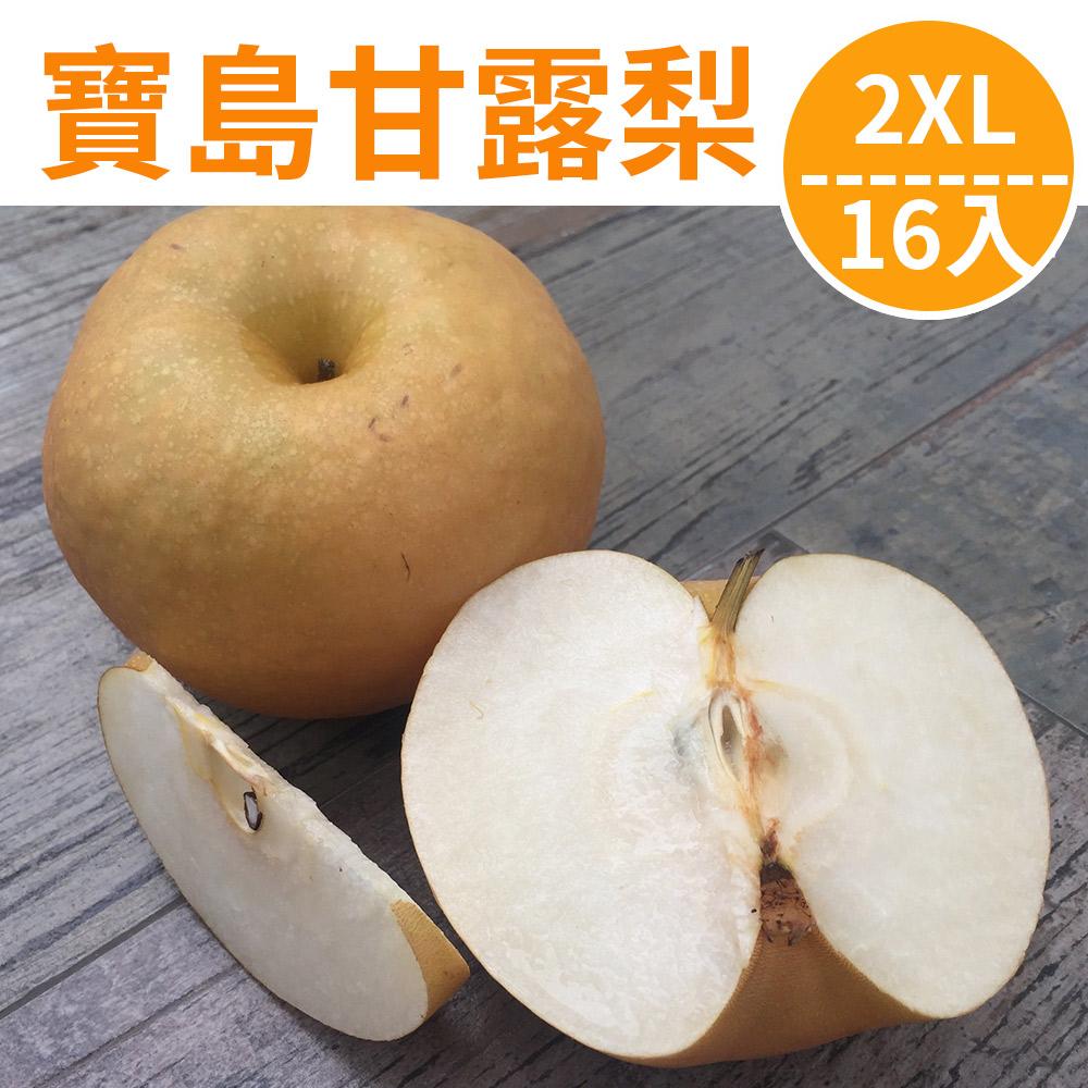 [甜露露]寶島甘露梨2XL 16入(15斤)