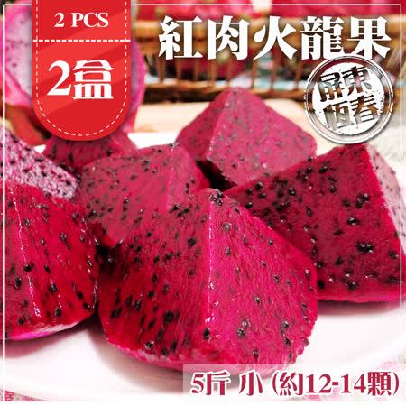 屏東恆春 紅肉火龍果3KgX2盒