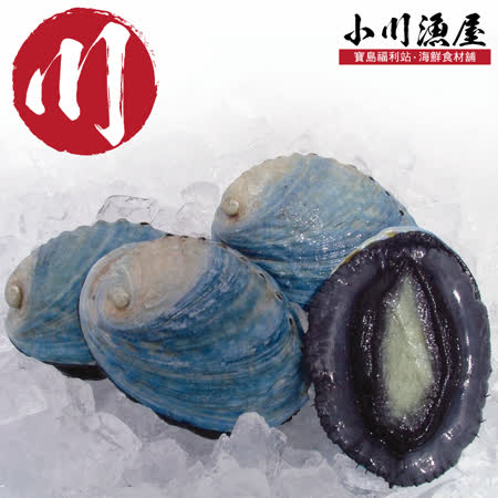 極品紐西蘭 活凍帶殼鮑魚4顆