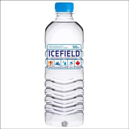 加拿大ICEFIELD 天然冰河水500ml 24入