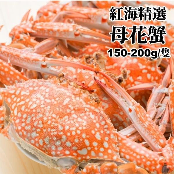 【海肉管家】斯里蘭卡母花蟹_共10隻(每包5隻/ 每隻約150~200g±10%)