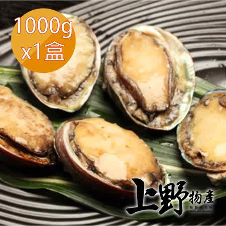 上野物產 鮮嫩帶殼鮑魚20顆