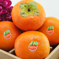 【水果達人】人氣超高摩天嶺甜柿L 12顆裝