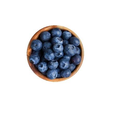 【智利】藍莓