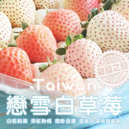 台灣獨特 戀雪粉嫩草莓