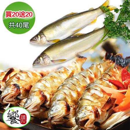 饗讚 淨水香脂香魚20尾