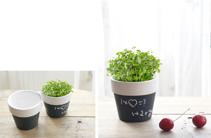 【PS Mall】留言盆栽 創意陶瓷多肉植物DIY可寫字花盆 (J309)
