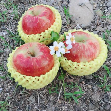 紐西蘭 蜜蘋果8顆X2盒