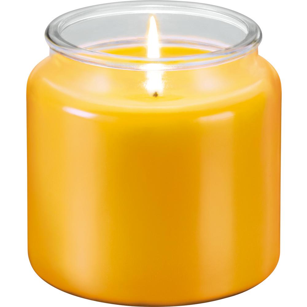 《TESCOMA》香氛蠟燭(檸檬草410g)