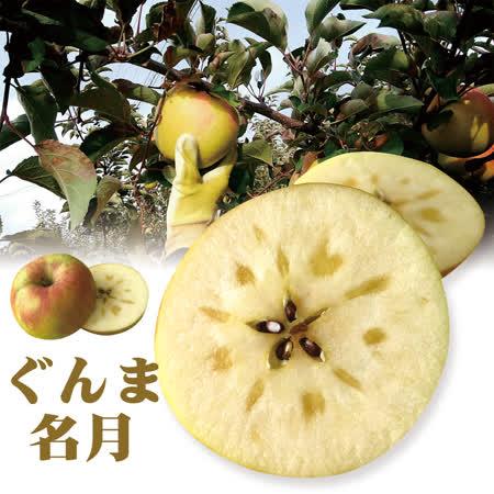 日本青森名月蘋果XL 12入