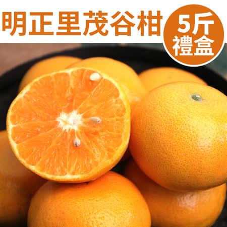 甜露露 明正里茂谷柑5斤禮盒