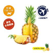 新鮮直送!2021 空運《TW台灣→JP日本》金鑽鳳梨(パイナップル)5kg(3~4粒入)