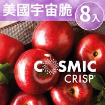 [甜露露]新品種!美國宇宙脆蘋果3XL 8入(3.6kg±10%)