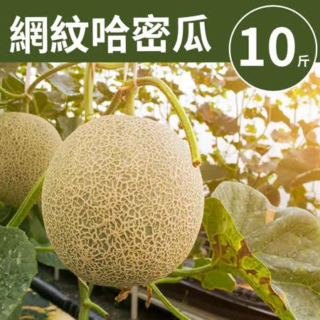 甜露露 台灣網紋哈密瓜10斤