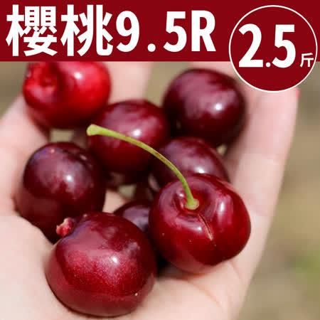 9.5Row 西北華盛頓櫻桃2.5台斤