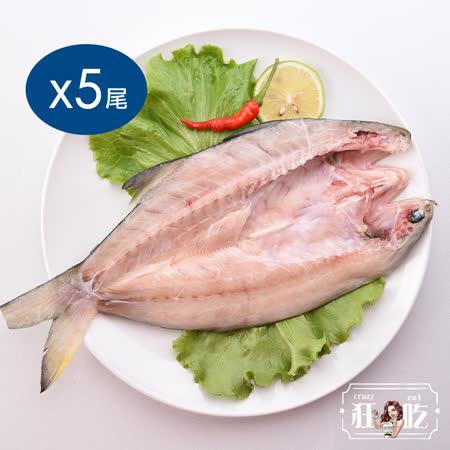 狂吃crazy eat 薄鹽午仔魚一夜干5尾