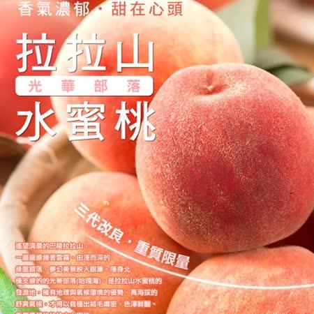 光華部落 拉拉山水蜜桃8粒(2.5斤)